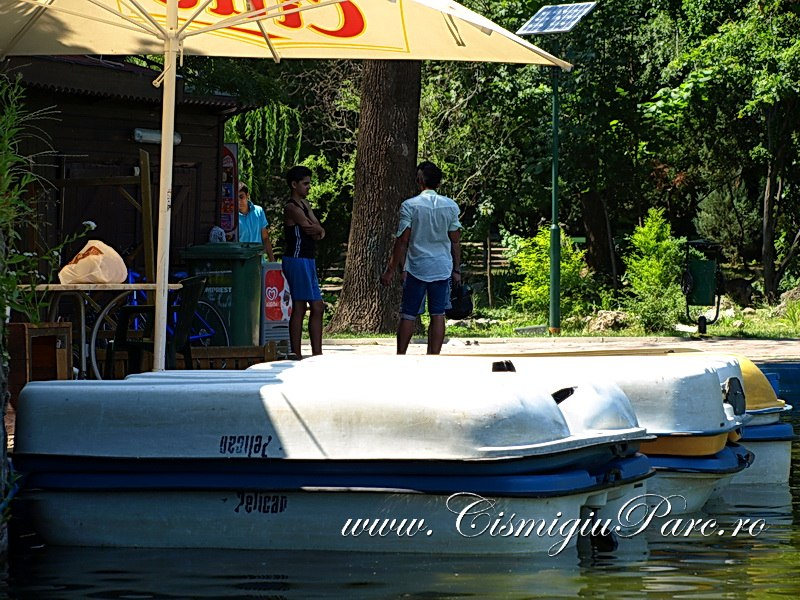 Lacul Cismigiu Plimbare Cu Barca Sau Hidrobicicleta