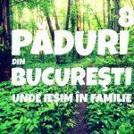 Păduri Bucureşti ieşim în familie.jpg