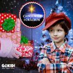 Cadourile de Craciun poveste gokid