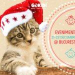 EVENIMENTE bucuresti 21-22 decembrie GOKID