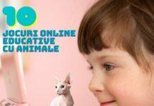 Jocuri Online Educative cu Animale pentru Copii Mici gokid pisica