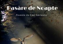pasare de noapte poveste emil garleanu